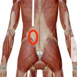 数年続いている慢性腰痛の改善施術/ 広島 腰痛治療を専門技術で行う整体師のブログ