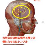 蝶形骨へのアプローチ準備2  頭の張りと目の疲れを徹底的に解消②−2 頭部ケア専門士テクニック